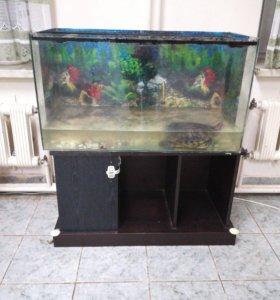Черепаха вместе с аквариумом и тумбочкой