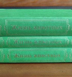Жизнь животных. Брэм. Комплект из 3 книг.
