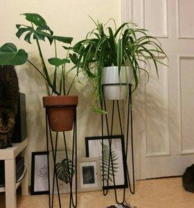 металлическая подставка (стойка) для цветов