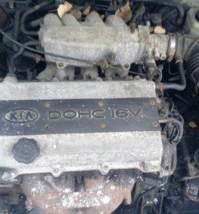 KIA SHUMA 1999 двигатель