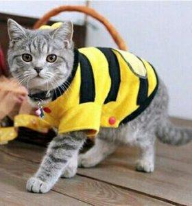 """Костюмчик """"Пчёлка"""" для кошек и собачек"""