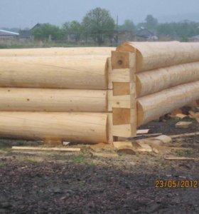 Срубы из зимнего леса