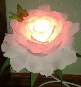 Цветок ночник🌹🔮
