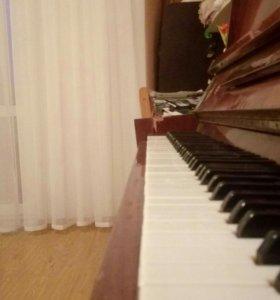 Фортепиано, аккардеон и гитара