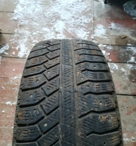 Continental ContiWinterViking2 205/60 R16