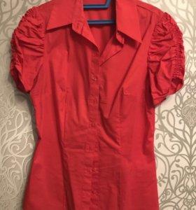 Рубашка/блузка incity 44 размер