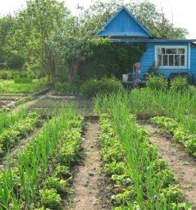 Участок, 4 сот., сельхоз (снт или днп)