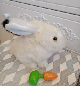 интерактивный кролик с морковкой Банни Lapa