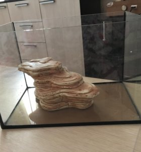 Аквариум вместе с камнем