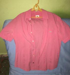 Рубашка Lacoste🐊 размер М