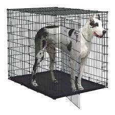 Клетки для перевозки собак.  Хромированные.