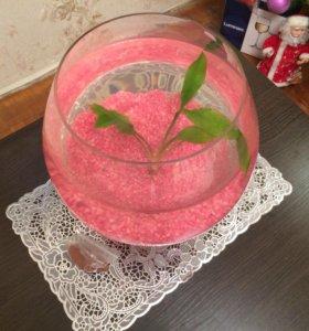 Бокал ваза аквариум