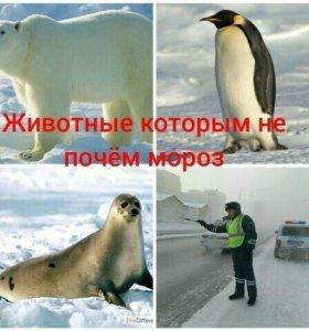 ТАКСИ Ст. Воронежская