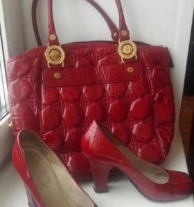 туфли и сумочка