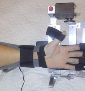 Бутон - для реабилитации кистей рук