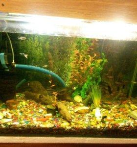 Красивый аквариум на 360 л.