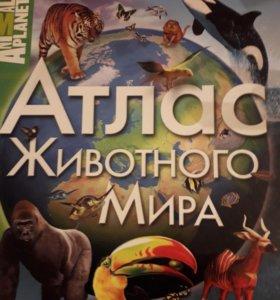 книги детские разные.