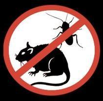 Обработка от насекомых и грызунов, дезинфекция