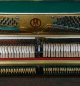 Отдам в дар фортепиано Аккорд-2