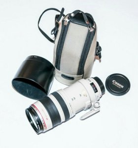 Canon EF 100-400mm 1:4,5-5,6 L IS