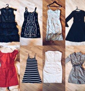 Платье Dolce Gabbana, Zarina, Mango, Bershka,Gropp
