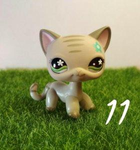 LPS кошка