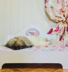 Кроватка-лежанка для собак. Новая.