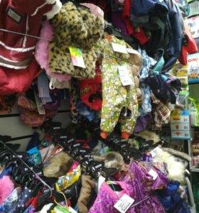 Одежда для собак. Комбинезоны