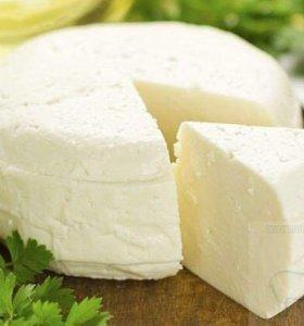Козий сыр из натурального молока Нубийских коз