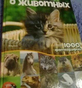 Книга альбом о животных