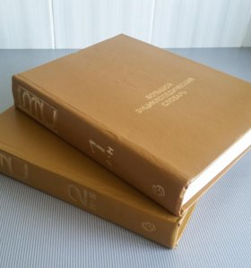 Большой энциклопедический словарь в двух томах
