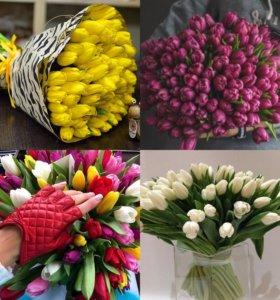 Тюльпаны новочеркасская на 14 февраля