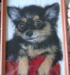 рисую шерстью портреты домашних любимцев по фото