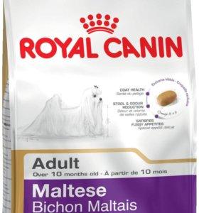 Корм для собак Royal Canin Maltese Adult 1.5 кг