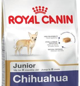 Корм для собак Royal Canin Chihuahua Junior 1,5 кг