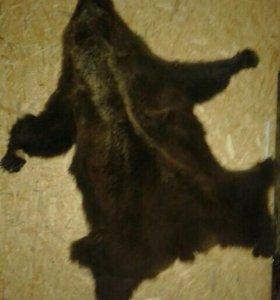 Шкура медведя.