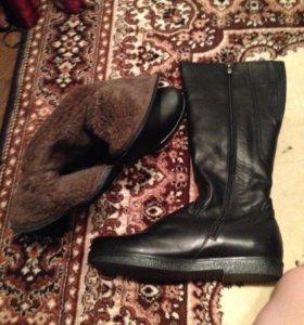 Сапоги, зимняя обувь