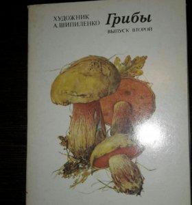 Набор открыток Грибы