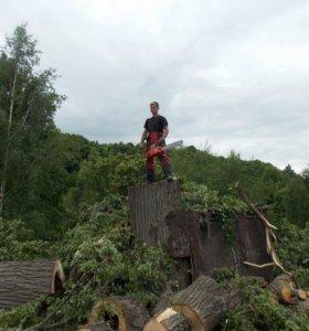 Обрезка,Опиловка, Спил, удаление любыхх деревьев