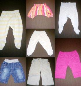 Ползунки, штаны и шорты