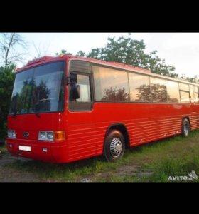 Автобус Киа 50 мест