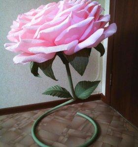 Ростовая роза с коробкой Рафаэлло