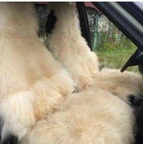 Авто накидки овчина и коза!!!