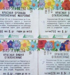 Цветы бархатцы, алиссиум, календула, ...