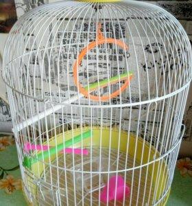Клетка для мелких папугаев.