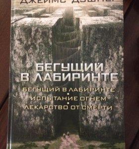 Книга «бегущий в лабиринте»