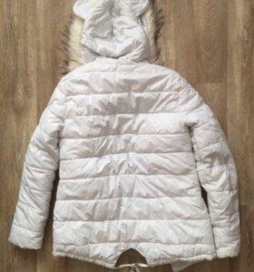 Куртки ( осень/зима)