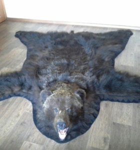 Медвежий ковер