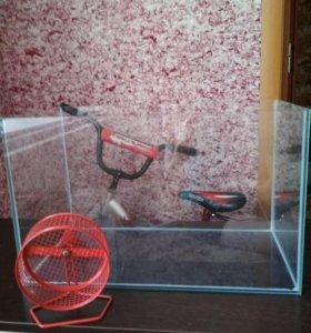 Аквариум и колесо для хомяка