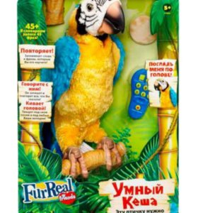 интерактивный попугай умный кеша